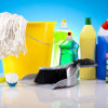 Toxic household chemicals