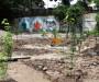 Фруктовый сад и детский огород в центре Киева