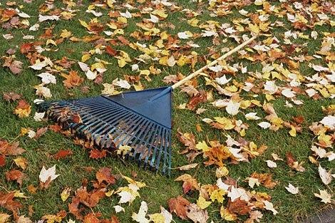Уборка территории - услуги уборки от компании ДЕН